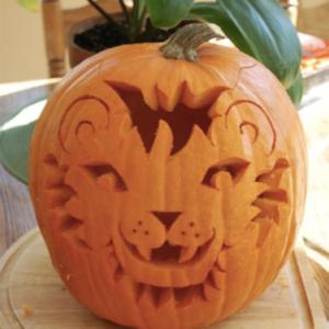 Cute Lion Pumpkin