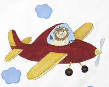 Lion in Airplane