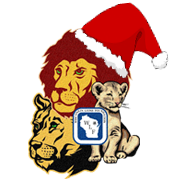 Lions Pride with Santa Hat