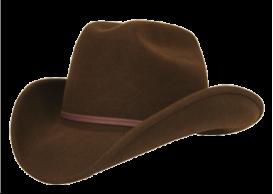 Lions Pride Cowboy Hat